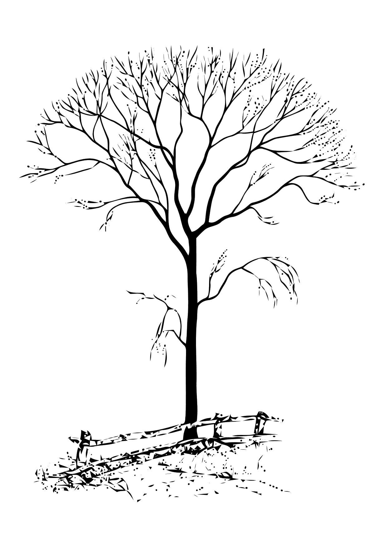 Images For Gt Winter Tree Coloring Page Tree Coloring Page