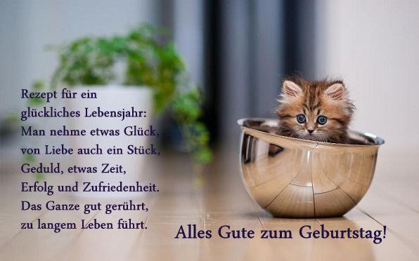 Alles Gute Zum Geburtstag Katze