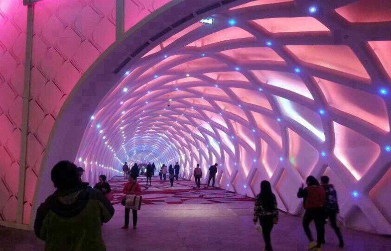 China Led Decoration Tunnel Lighting 30mm Waterproof Ip67 Uv Protection Pixel Led Rgb Supplier Nightclub Design Led Decor Club Design
