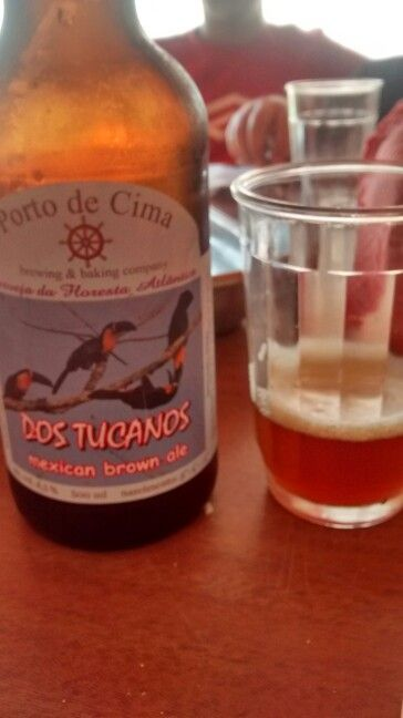 Mexican brown ale com coentro