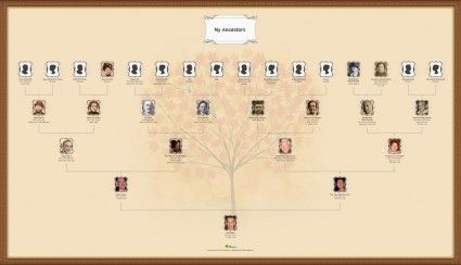 make a pedigree chart online