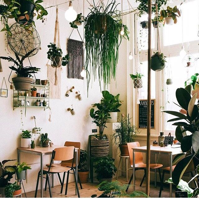 Pin by Grace on Green Pink cafe, Inside a house, Pretty