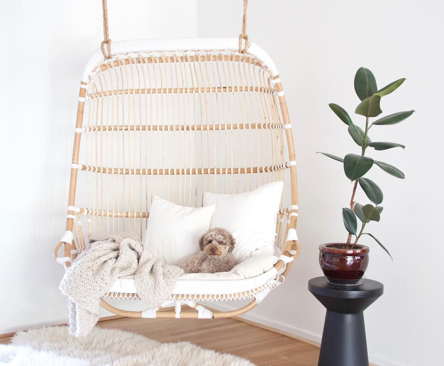 Double Hanging Rattan Chair Chairs Serena and Lily in