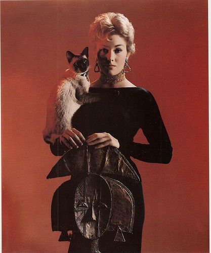 Kim Novak With Pyewacket Bell Book And Candle 1958 Von