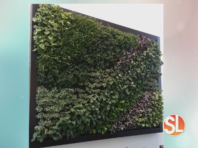 How To Make A Living Wall With IKEA And Terri O   Sonoran Living Sponsors  Story