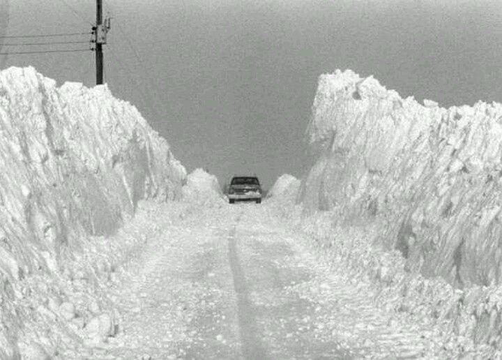 The Garden Window Of The World Blizzard Extreme Weather Ohio