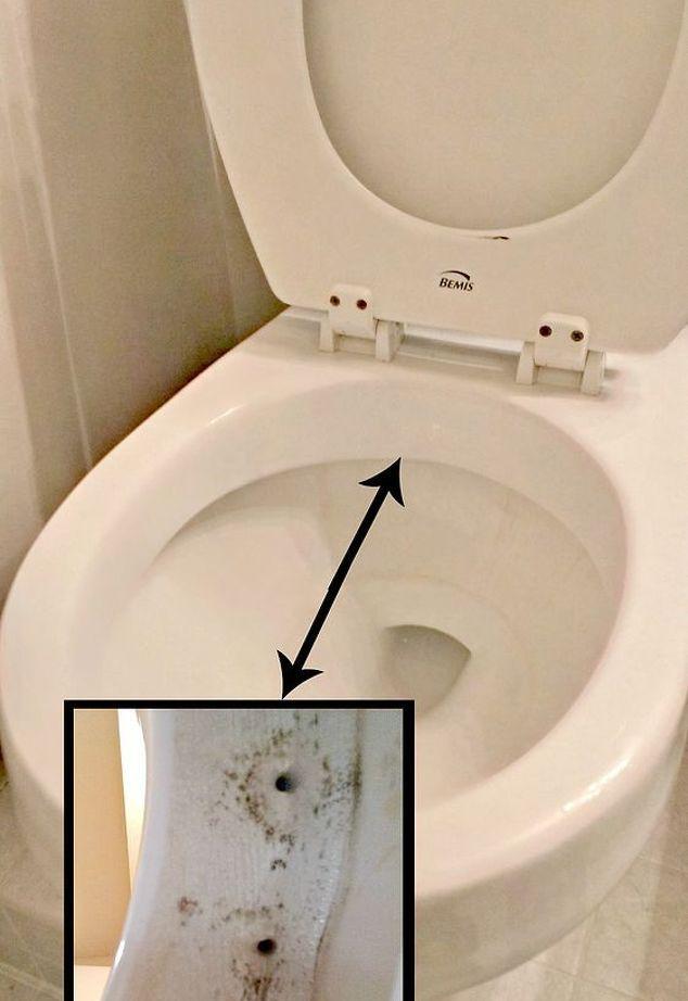 manter um banheiro limpo por muito mais tempo, idéias do banheiro, dicas de limpeza, jatos sifão abaixo da borda do vaso sanitário