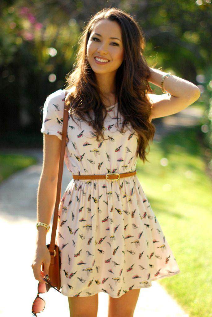 bird chiffon dress