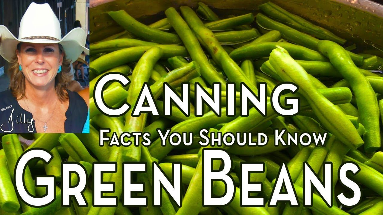 How to Can Fresh Green Beans Facts You Should Know