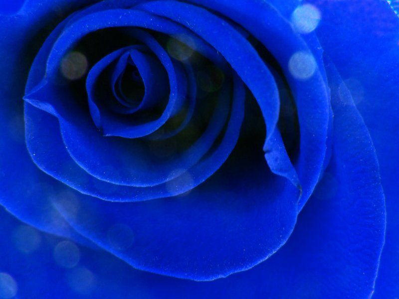 Show Me The Color Indigo Colour Blue Meanings