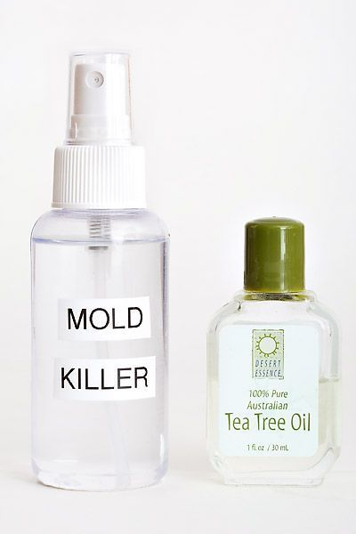 Kill Mold And Mildew With Tea Tree Oil Review Does It Work