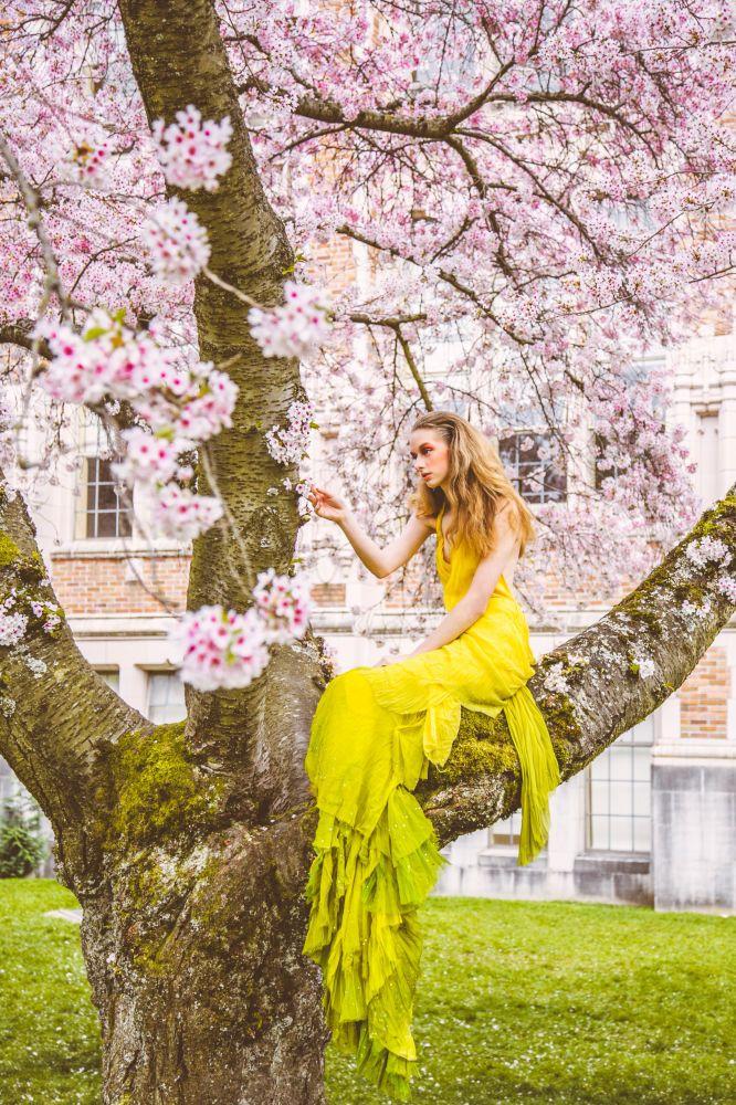 Beautiful Star Fashion In The Tree Fashion Blog
