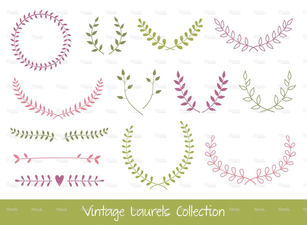 vector laurel branches and wreaths printable pinterest couronnes florales laurier et. Black Bedroom Furniture Sets. Home Design Ideas