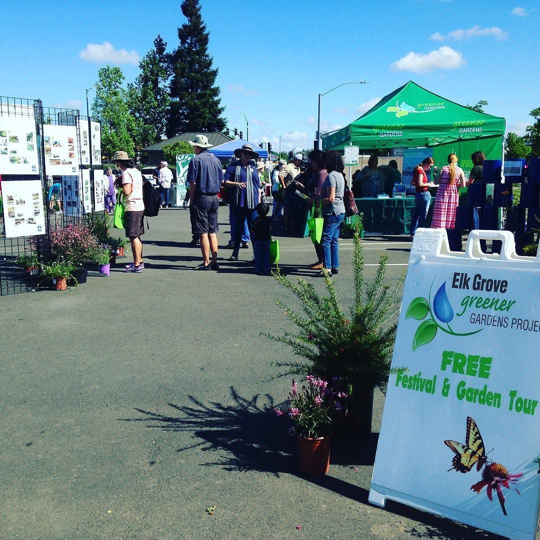 Elk Grove Greener Garden Tour starts at our Elk Grove