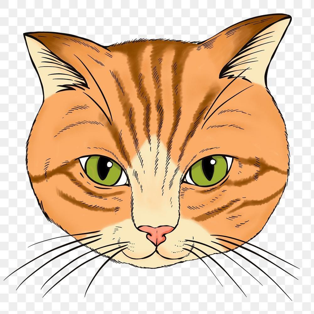 Hand Drawn Orange Cat Design Element Free Image By Rawpixel Com Noon Cat Face Drawing Orange Cat Cat Design