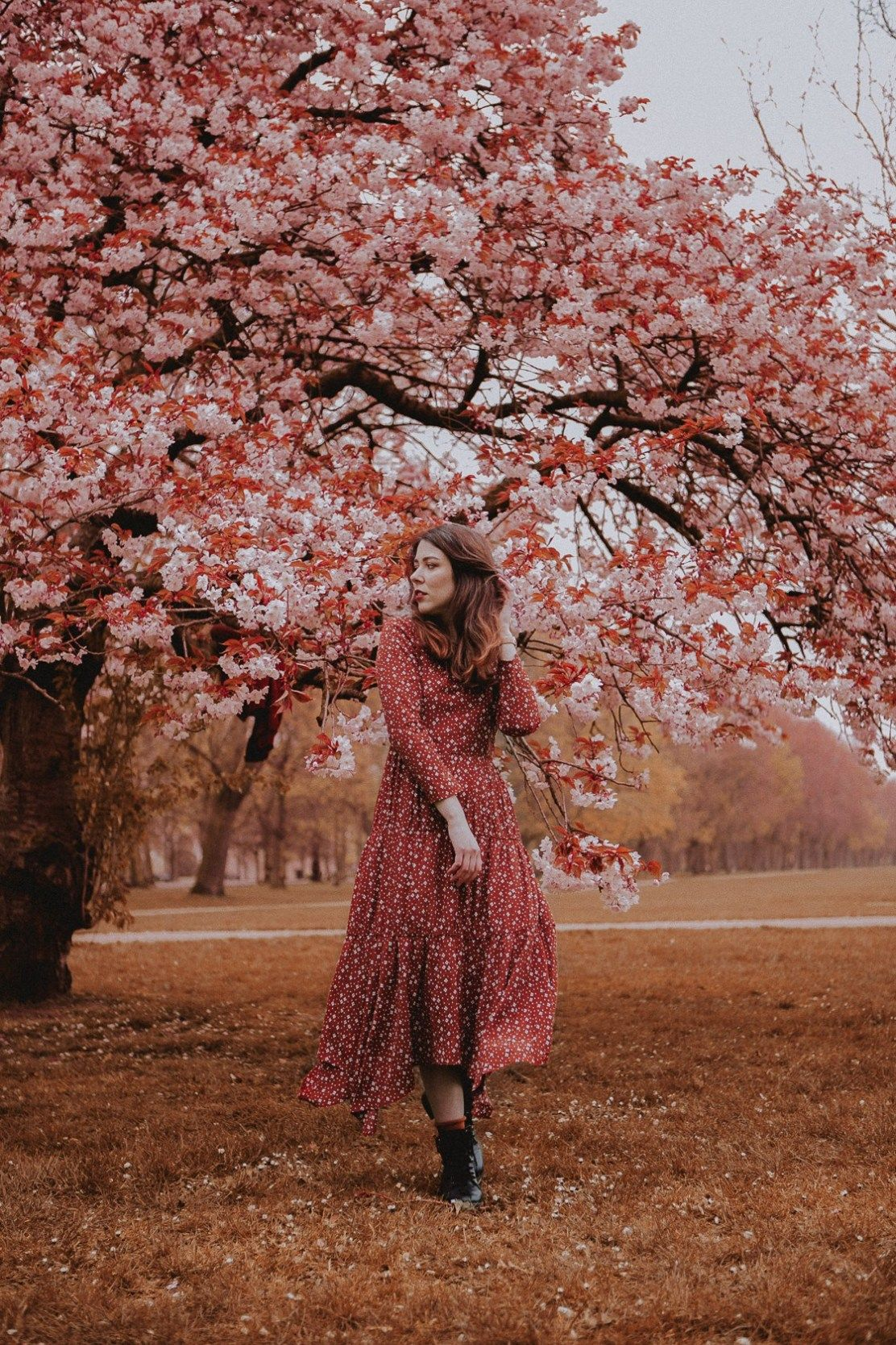 Regent S Park London Outfit Ootd Sakura London Cherry Blossom London In Bloom Spring In L Cherry Blossom Pictures Spring Photoshoot Cherry Blossom Outfit