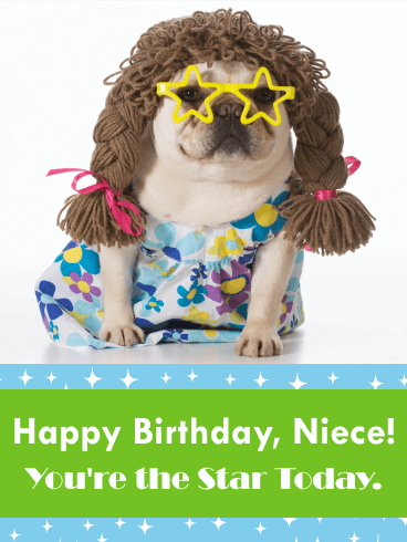 Funny Birthday Card For Niece Let Your Know That She Is A Star Today With This Humorous The Cute Dog Wearing Glasses
