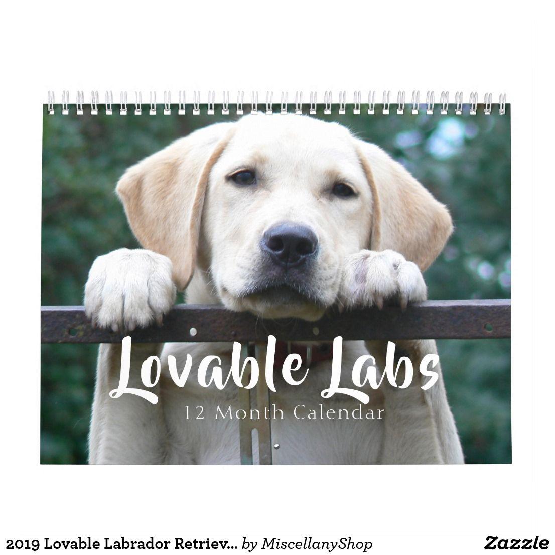 2020 Loveable Labrador Retriever Dog Calendar Zazzle Co Uk