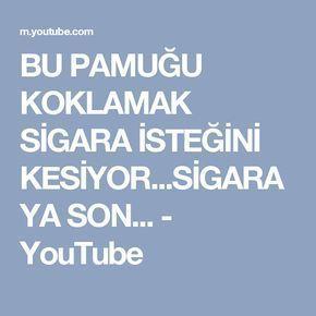 BU PAMUĞU KOKLAMAK SİGARA İSTEĞİNİ KESİYOR...SİGARAYA SON... - YouTube