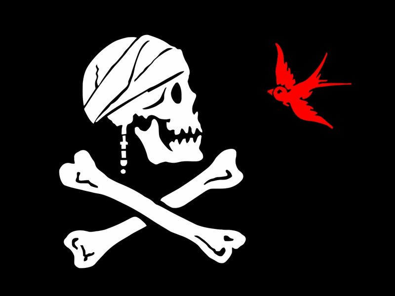 THE PIRATE CAPTAINS FLAG 5/' x 3/' Skull and Crossbones Jolly Roger Pirates Party