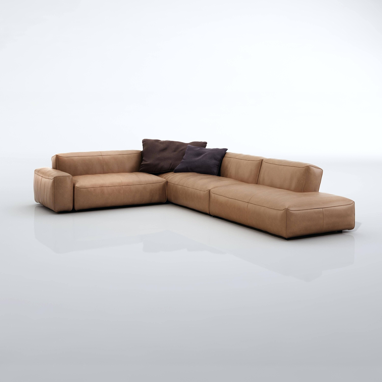 Comfortable Rolf Benz Sofa Affordable Sofa Sofa Furniture