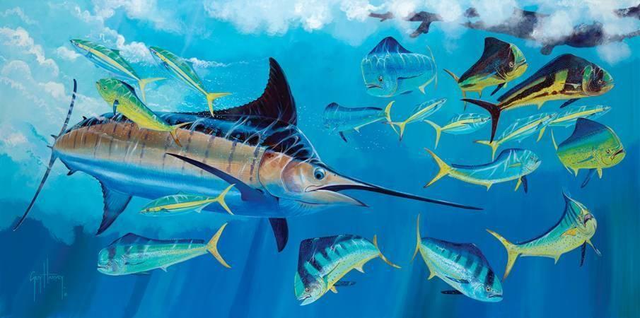 Marlin April 1 Jpg 905 450 Guy Harvey Art Fish Art Marine Life Art