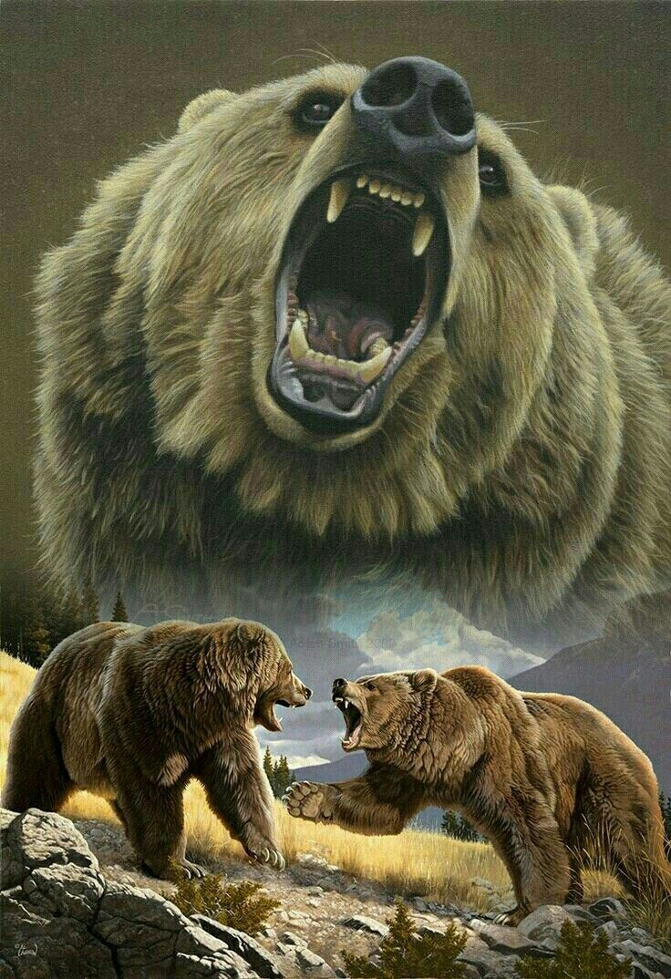 Stunning Grizzly Bear Art! | Animais | Pinterest | Osos, Animales y ...