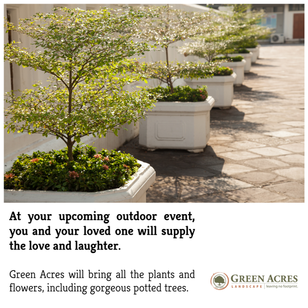 You And Your Loved One Will Supply The Laughter Green Acres Will Bring The Flowers And Plants Including Gorgeous Potted Potted Trees Plants Outdoor Events