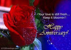 Happy anniversary wedding anniversary pinterest anniversary