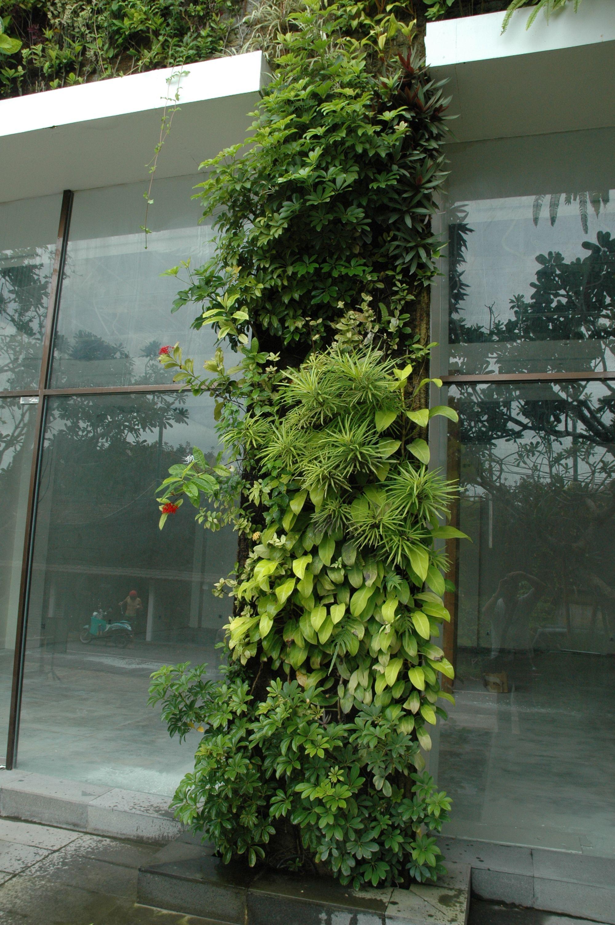 Green Room Garden Design: Street Entry To The Sea Sentosa