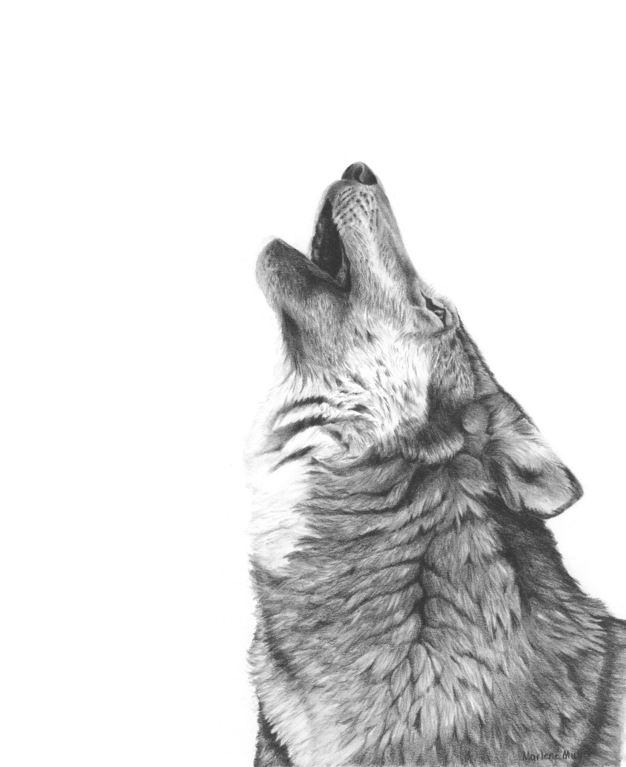 Wolf art print wildlife art black and white drawing gift | Etsy
