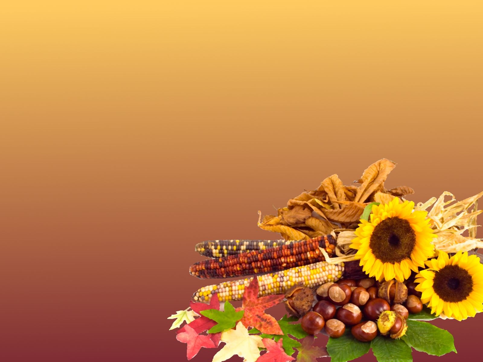 Thanksgiving powerpoint backgrounds hd free wallpapers - Thanksgiving screen backgrounds ...