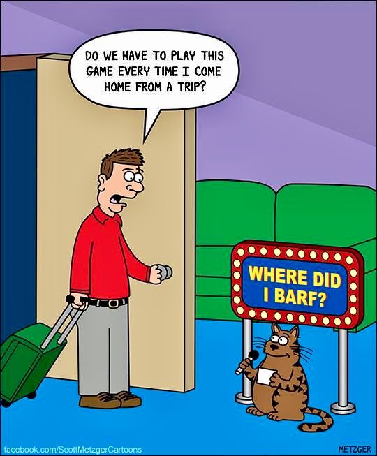 Cat Barf Pinterest Cartoon Image One