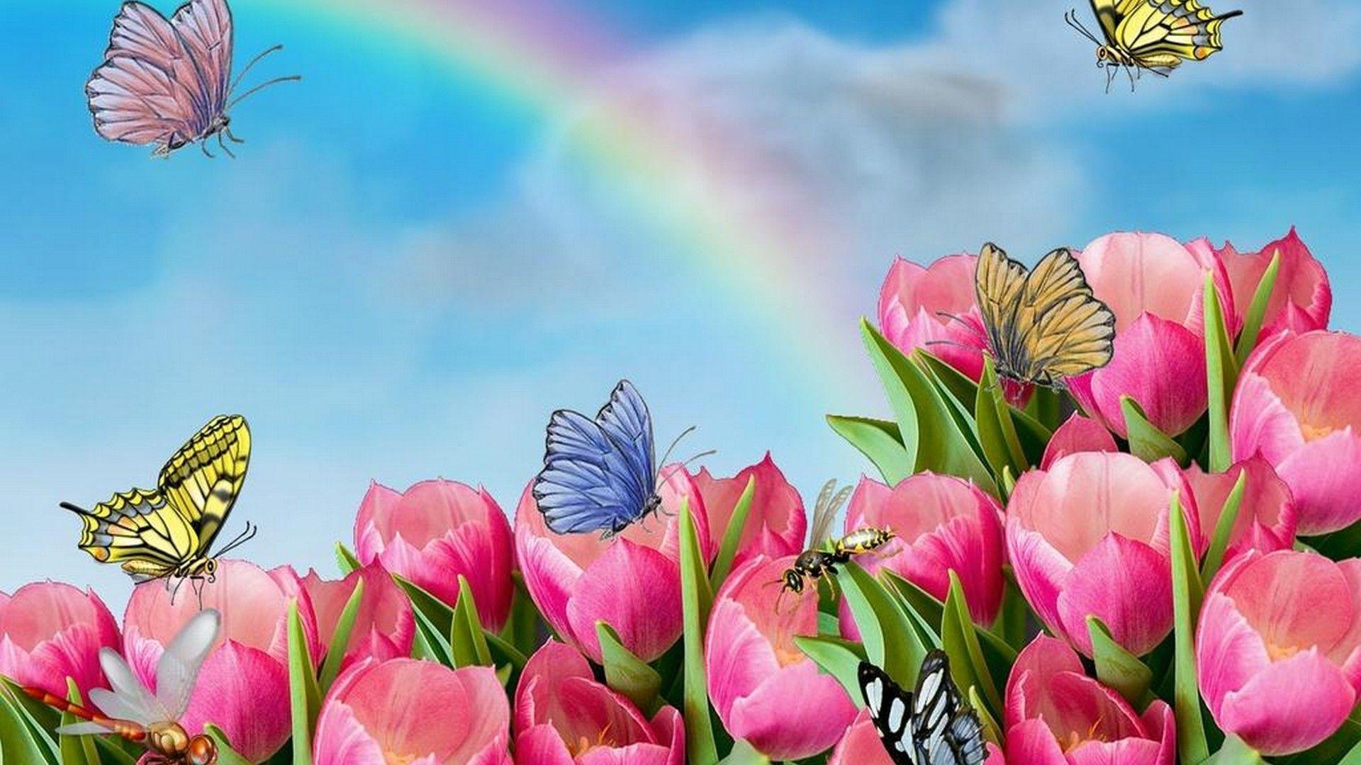 Animated Flower Wallpaper Best HD Wallpapers Flower
