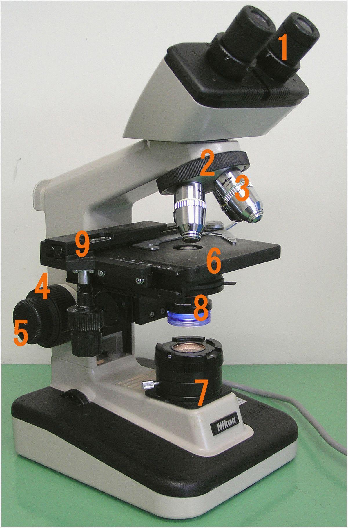 41 New Biology Laboratory Manual A Laboratory Skills