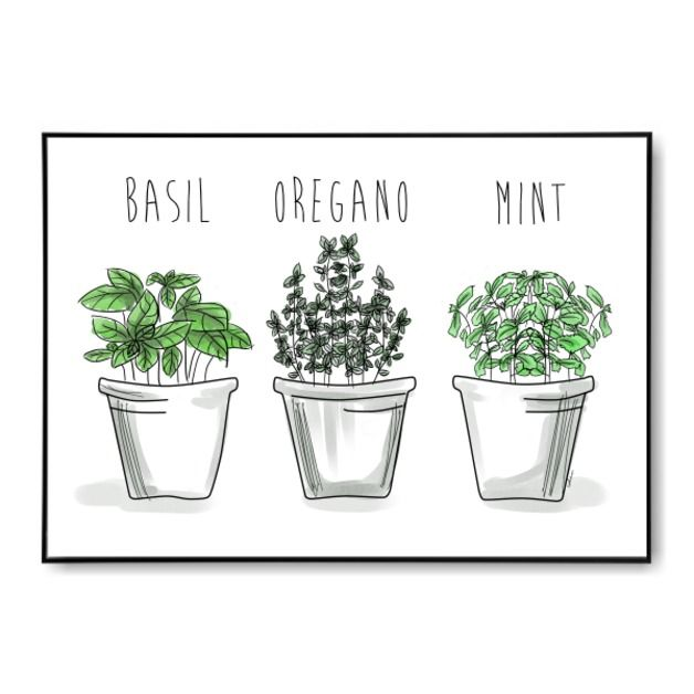 Aromatyczne Ziola Plakat Do Kuchni I Jadalni Planter Pots Planters Plants
