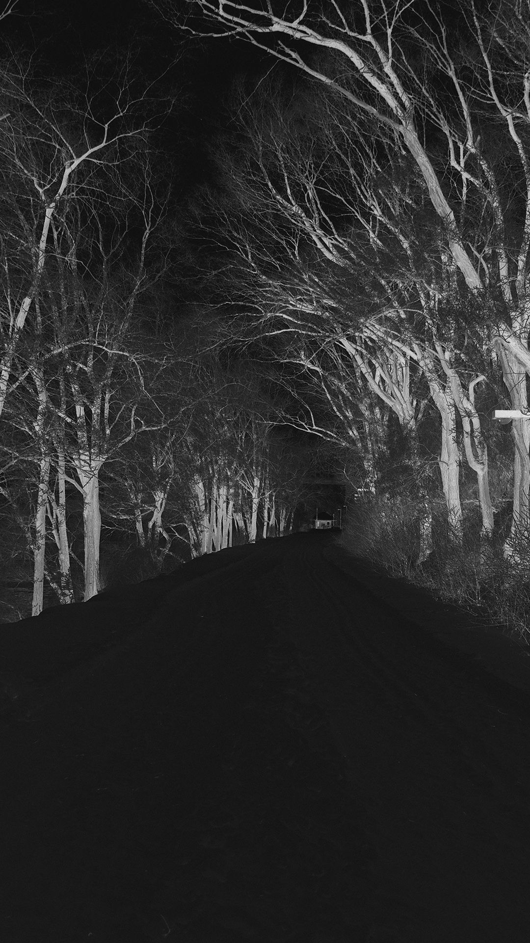 Winter Scary Road Nature Mountain Dark iPhone 6 plus