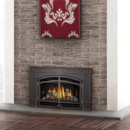 Napoleon Direct Vent Gas Fireplace Insert With Glass Door