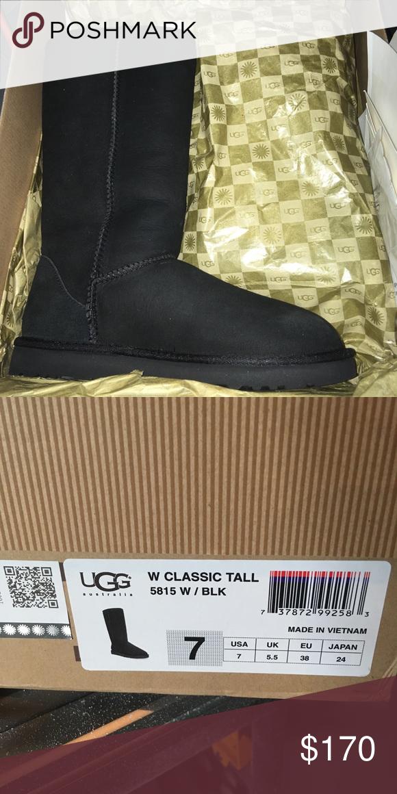 BNIB ugg boots size 7   Boots, Ugg