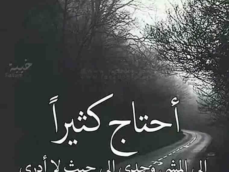 خلفيات حكم و أقوال فيسبوك أحتاج كثيرا الى المشي وحدي Calligraphy Arabic Calligraphy