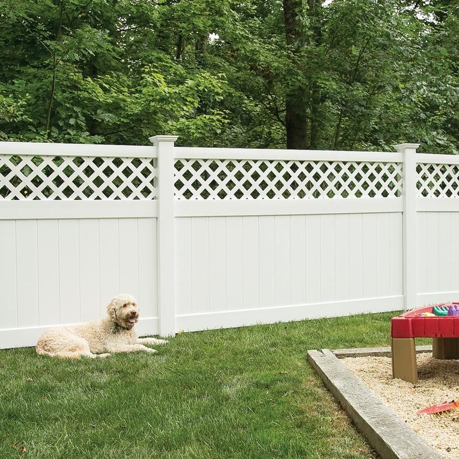 Freedom Ready To Assemble Conway 5 Ft H X 8 Ft W White Vinyl Lattice Top Fence Panel Lowes Com Fence Panels Vinyl Fence White Vinyl Fence