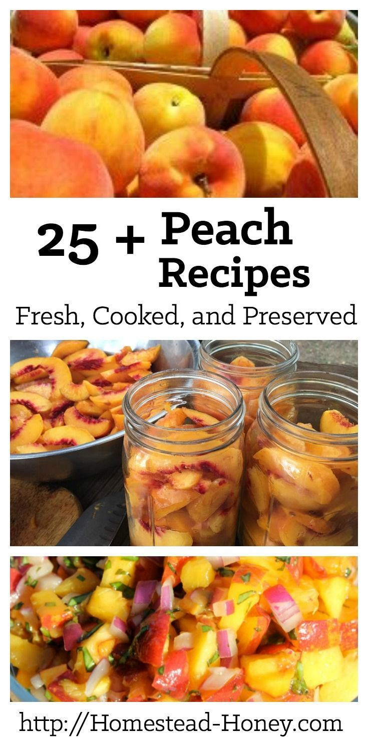 When peaches are ripe and delicious, have this collection of fresh, cooked, and preserved peach recipes at the ready to enjoy! | Homestead Honey