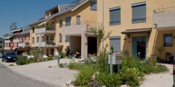 Neupflanzungen Baselland   Ihre Neupflanzungen Experten im Baselland