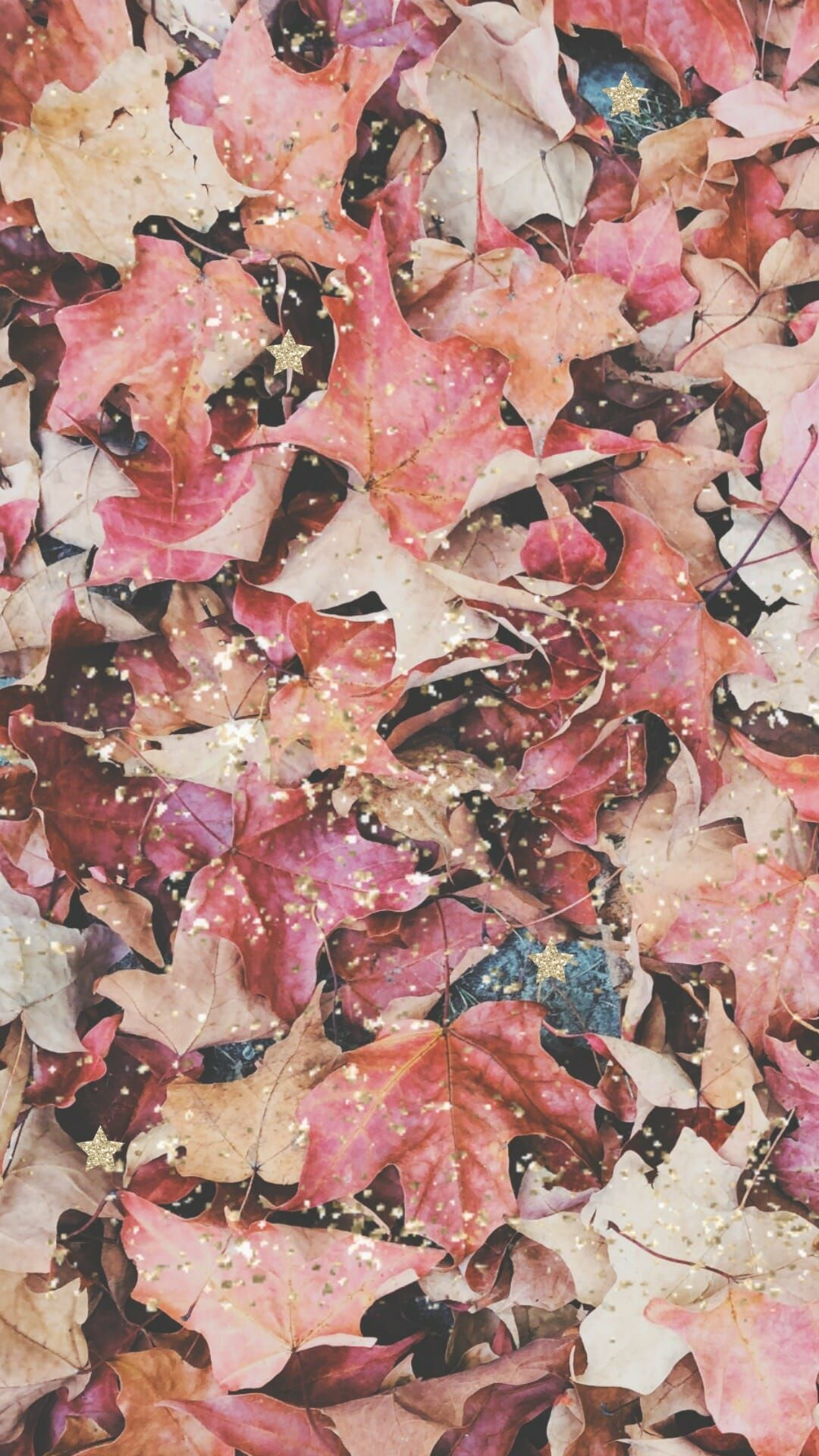 40 Free Amazing Fall Wallpaper Backgrounds For Iphone Fall Wallpaper Free Phone Wallpaper September Wallpaper