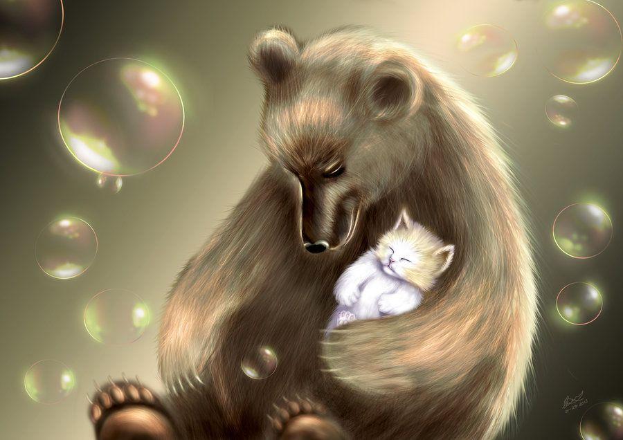 представляем четыре картинки медведь и кошка сухой