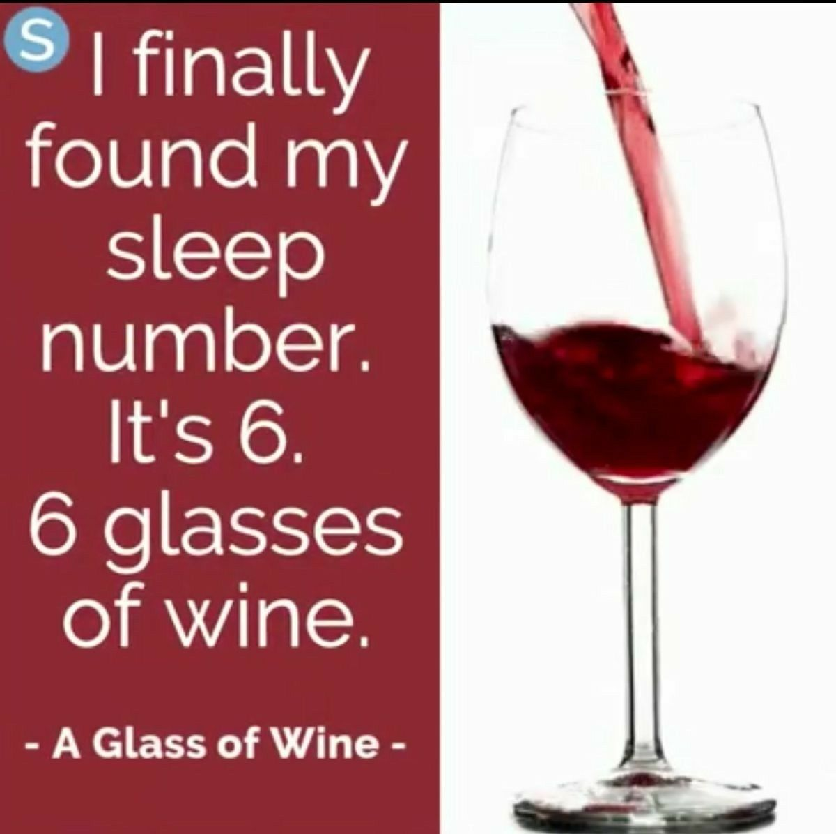 Wine Storage Temperature And Serving Suggestions Wine Jokes Wine Humor Wine Quotes