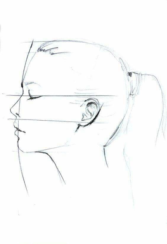 Anatomia Rostro Tutoriales De Dibujo De Cara Perfiles Dibujo Dibujo De Rostro Femenino