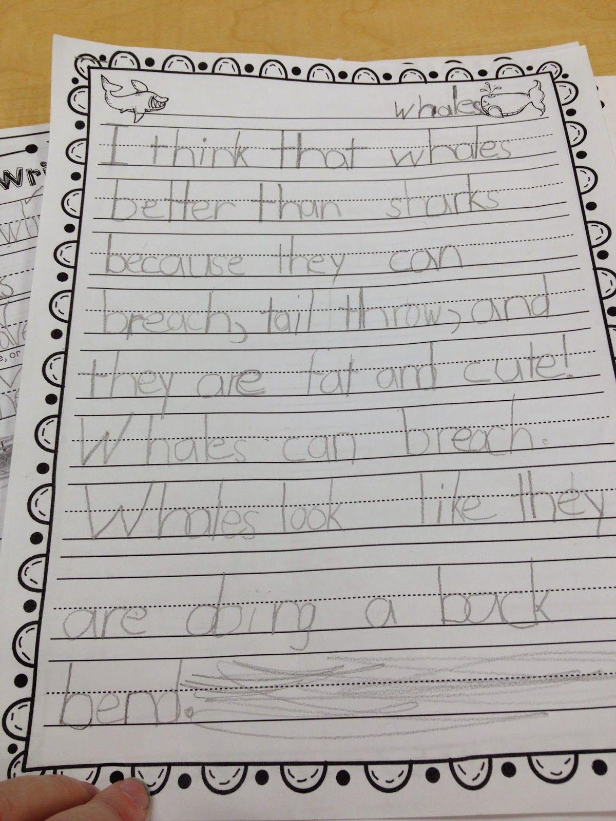 Kindergarten 5 Paragraph Essays Kindergarten Writing Paragraph Essay Essay Writing