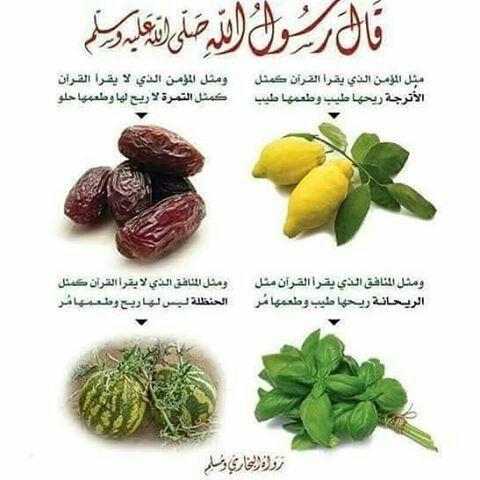Desertrose حديث نبوي شريف Vegetables Ale Food