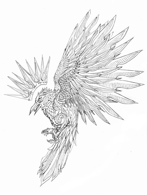 Bird Tattoo Lineart Birds Tattoo Tattoos Bird